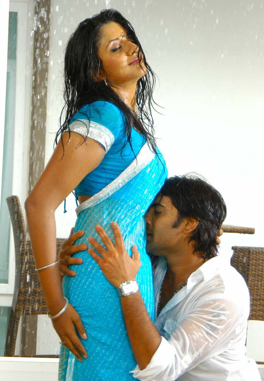 Hot Navel Kiss In Saree Images