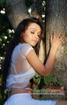 actress arya spicy stills 28 7201
