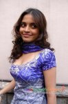 actress sheena shahbdi spicy stills 22 7201