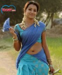hot trisha navel saree pics 1